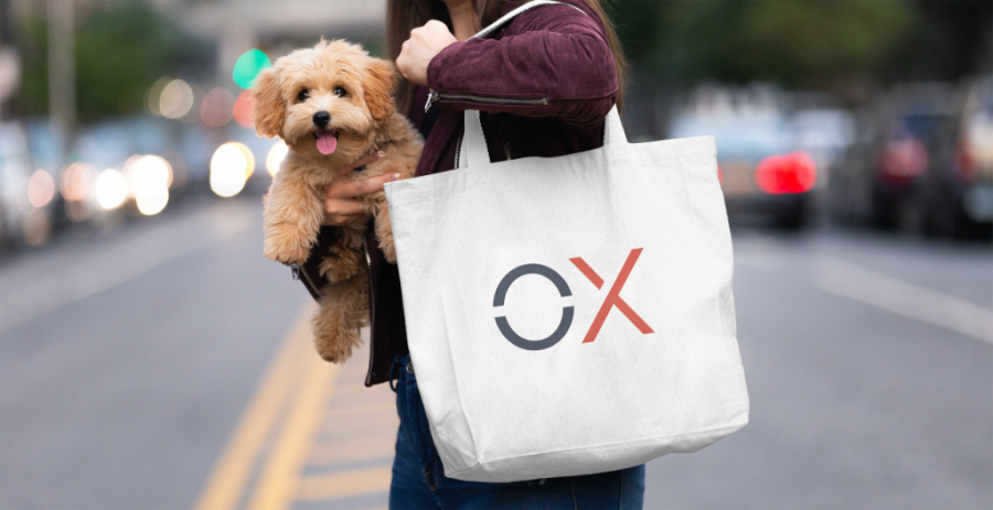 OX Aligner office dog